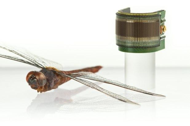Учените изследвали по какъв начин работят очите на насекомите и създали миниатюрни изкуствени очи