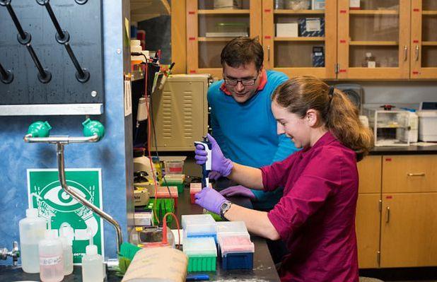 Учени от Вашингтонския университет се подготвят да секвенират изкуствена ДНК, за да прочетат записа в нея (снимка: Тара Браун, Вашингтонски университет)